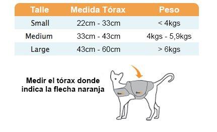 medidas-gatos