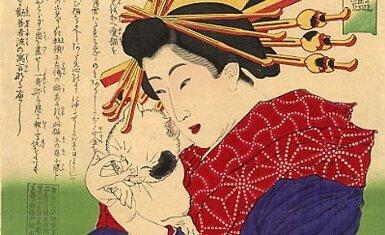 gatos-japon
