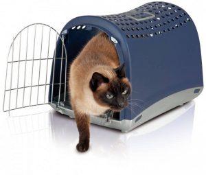trasportin-gato
